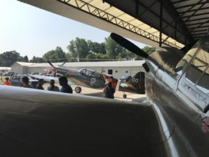 Curtiss P-40s